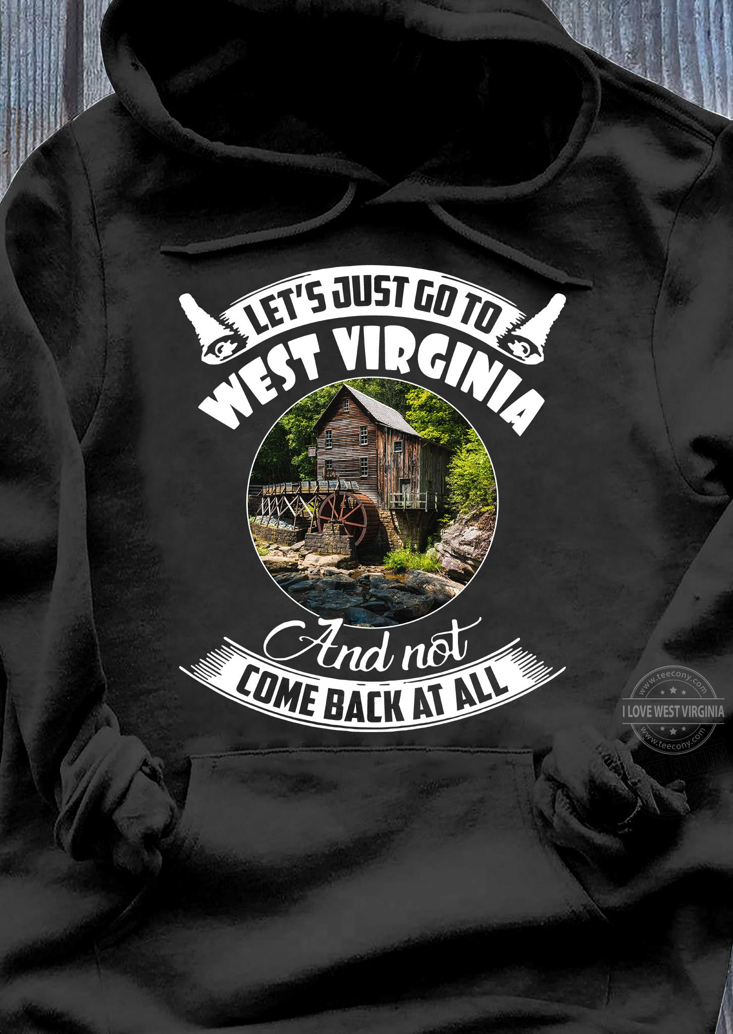 GO TO WEST VIRGINIA AND NOT COME BACK SHIRT